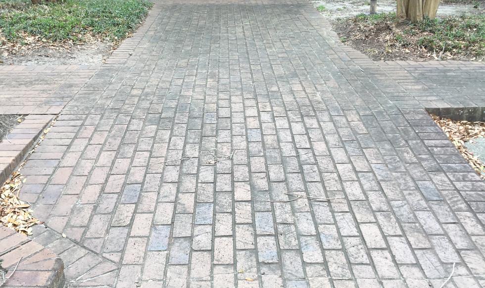 Brick Walkway Cleaning-Before