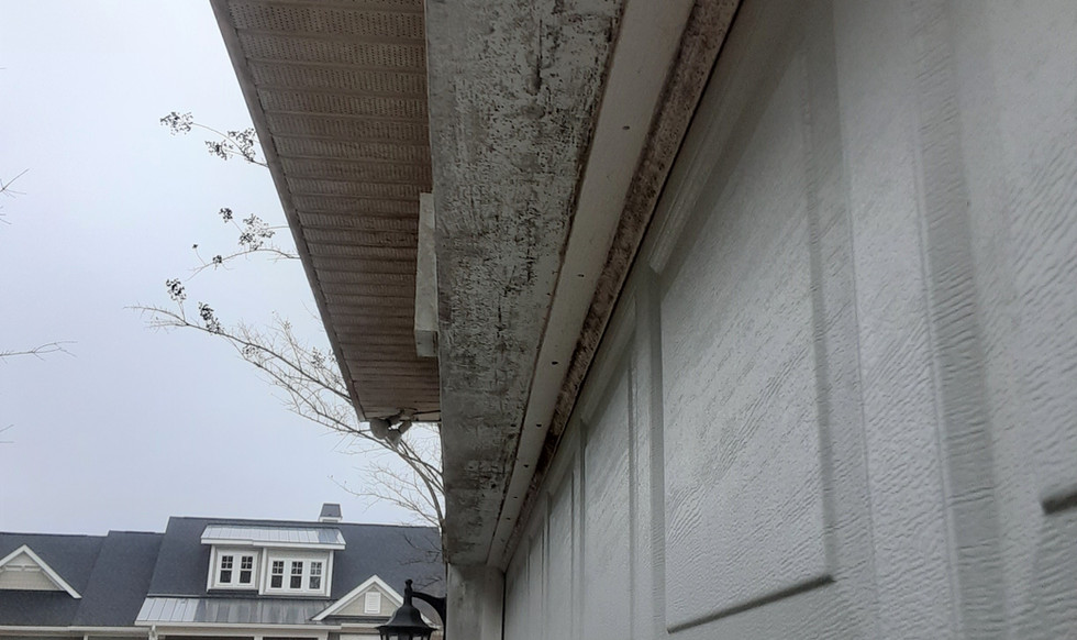 BEFORE CLEANING OF SOFFIT AND GARAGE DOOR