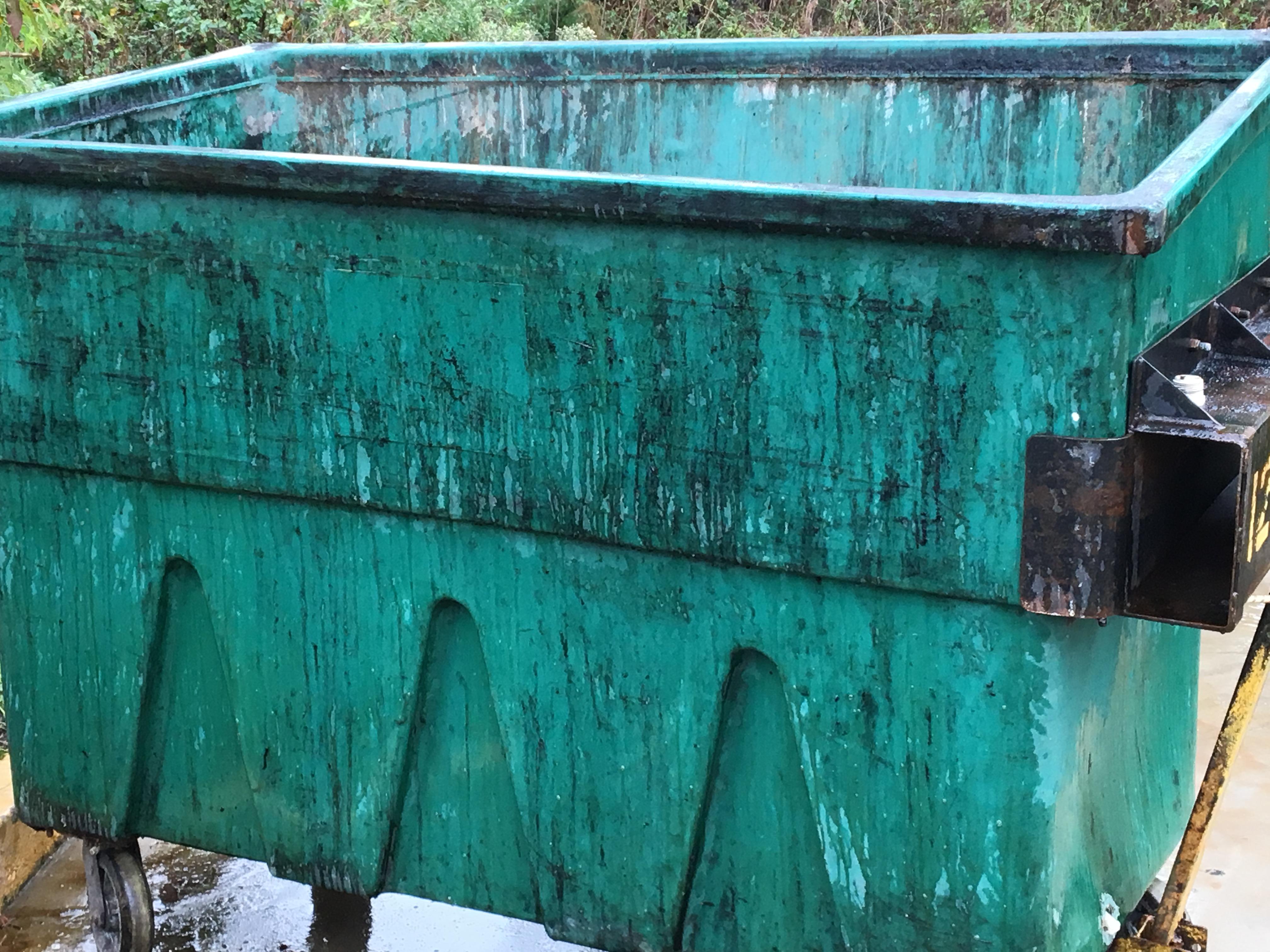 Trash Bin Cleaning