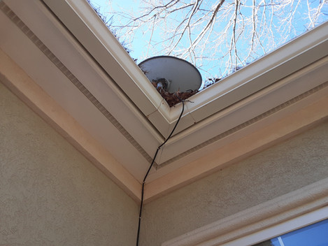 GUTTER CLEANING-BEFORE