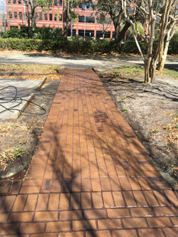 Walkway Cleaning