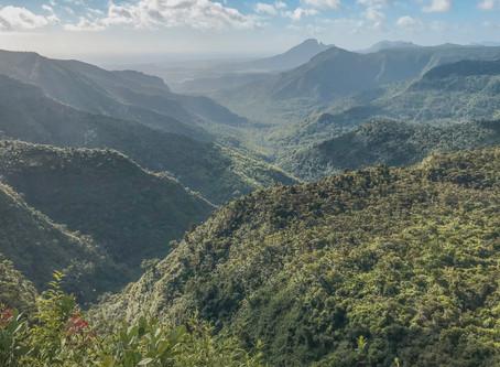 Black River Peak - Piton de la Petite Riviere Noire