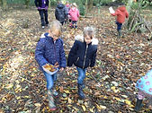 Looking for leaves at Forest school.JPG