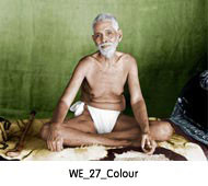 we_27_colour.jpg
