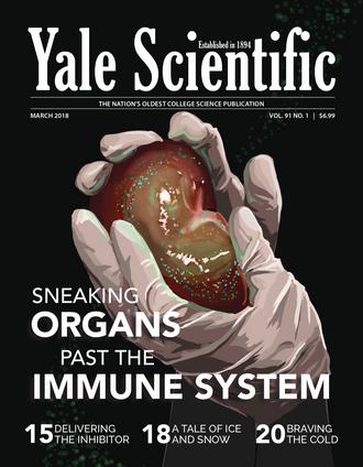 Yale Scientific