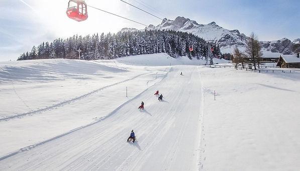 csm_schlitteln-fraekmuentegg-winter-ski-