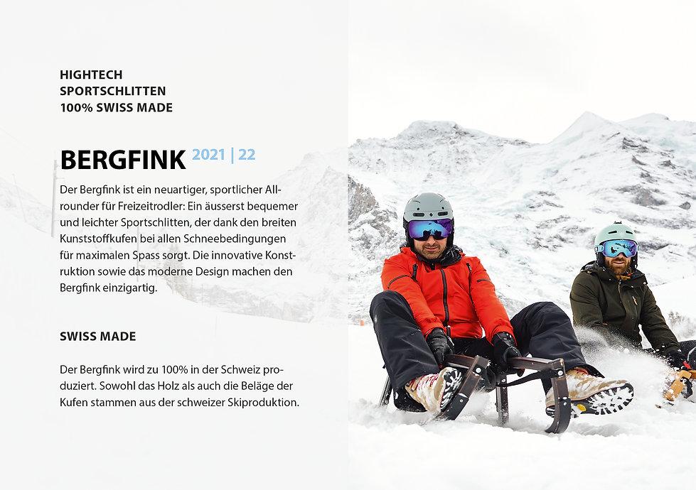 Bergfink_20212.jpg