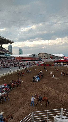 First Timer at Calgary Stampede