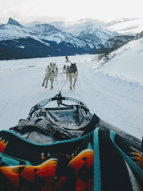 Kananaskis Nordic Spa and Snowy Owl Dog Sledding