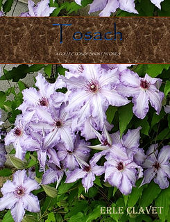 Tosach - Cover.jpg