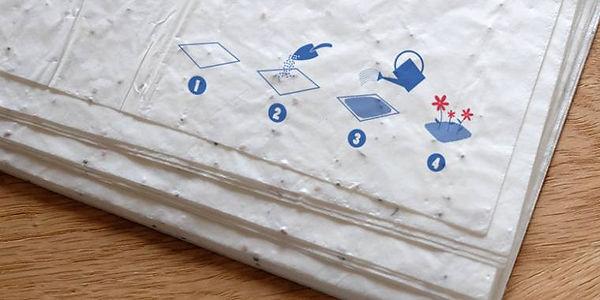 Home-papier-graine780x400_760_380_70_s_c