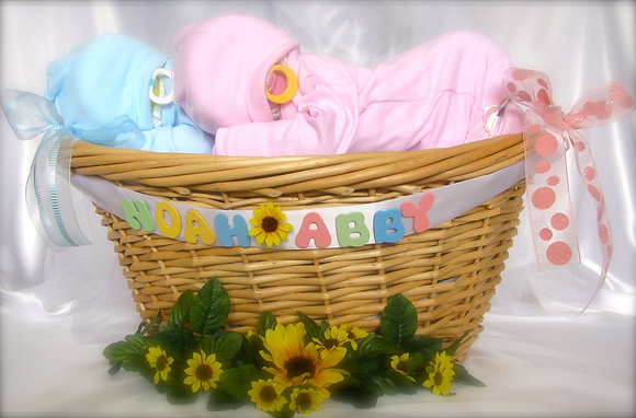 Everything and The Baby Twin Basket