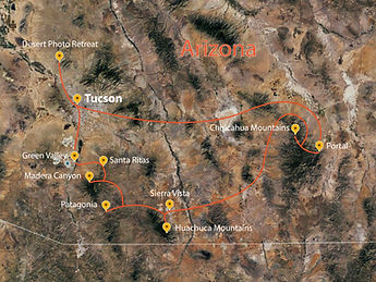Arizona Photo Tour- Monsoon Wings of Southeast Arizona-01.jpg