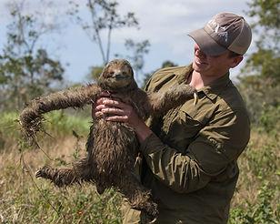 sloth-8661.jpg