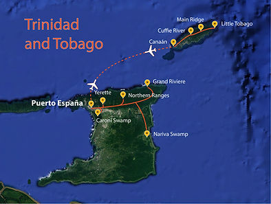 Trinidad and Tobago- Easy Neotropical Birding AND Scarlet Ibis!-01.jpg