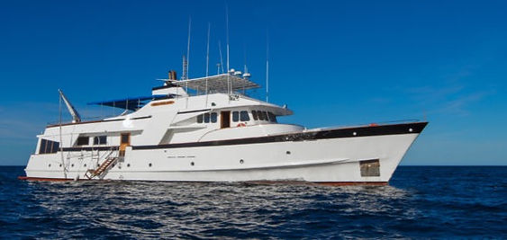 Copy%20of%20beluga-yacht-enchanted-exped