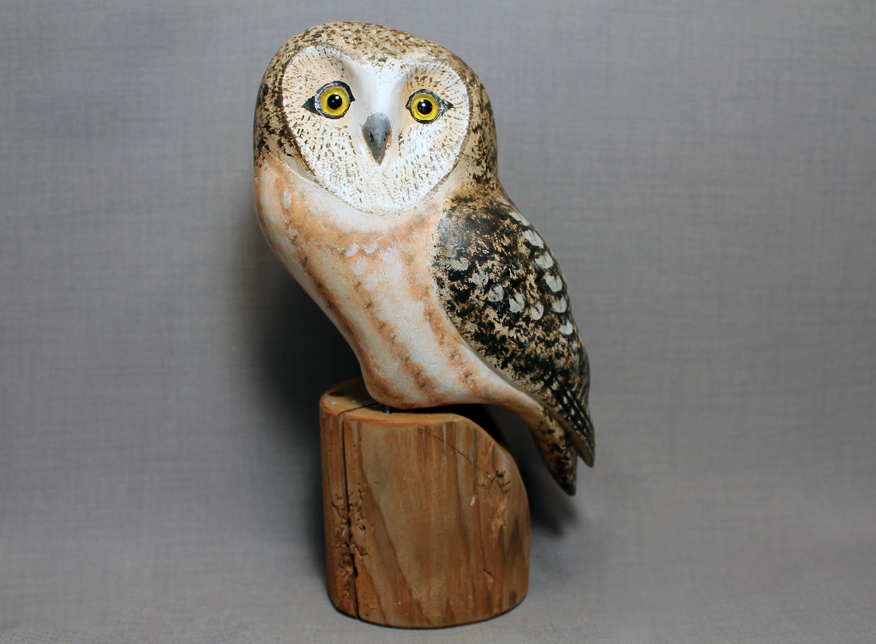 Owl (Sawhett)
