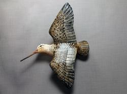 Woodcock Flyer Wallmount