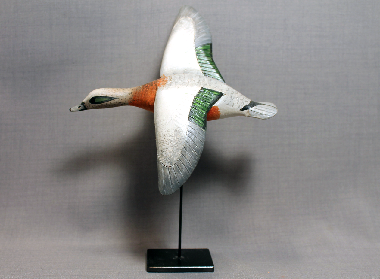Wigeon Flyer on Stand