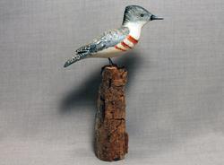 Kingfisher Mini