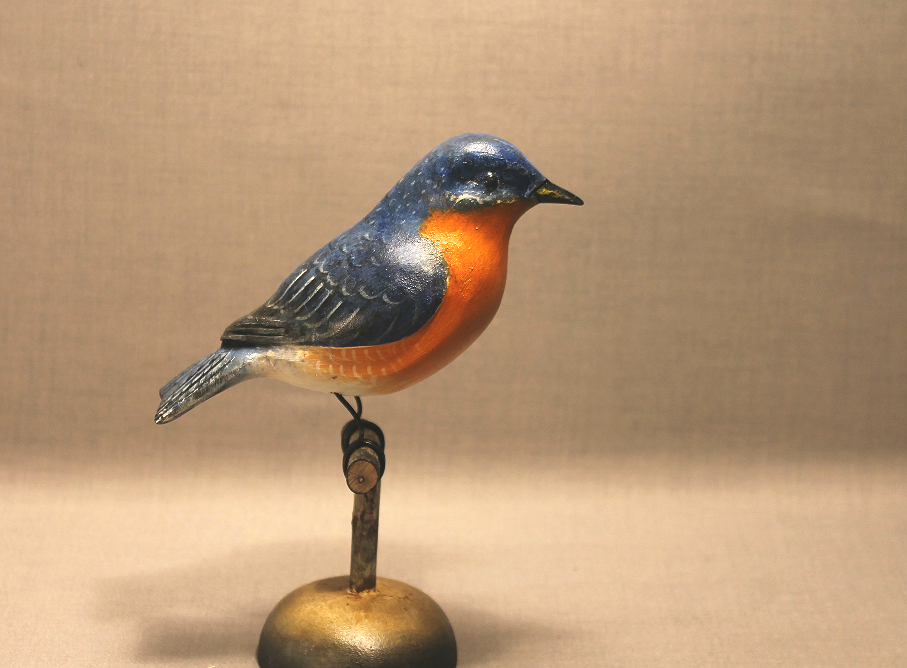 Bluebird on Perch