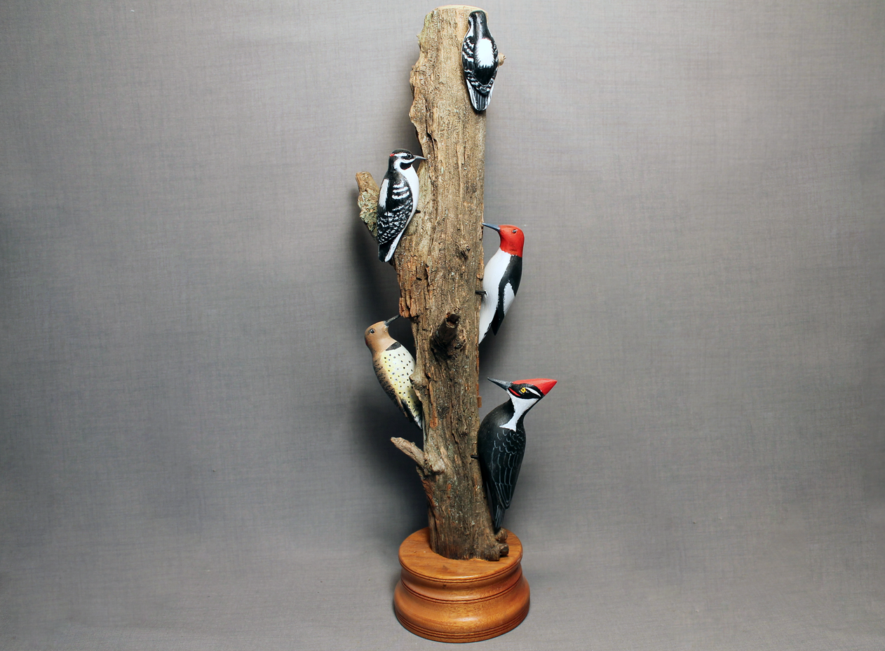 Woodpecker Bird Tree