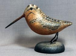 Woodcock Mini