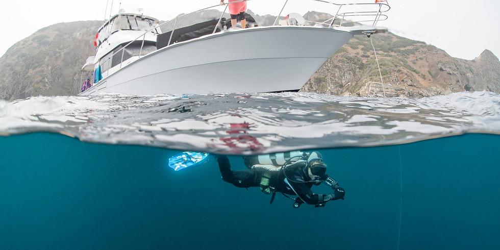 Catalina Island - November 14 & 15 - 2 Day Boat Trip