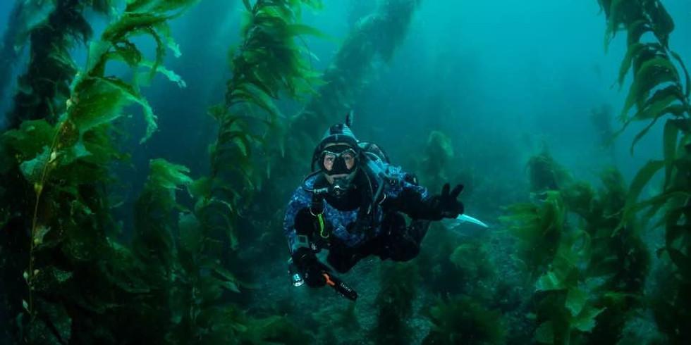 Catalina Island -  March 17 - Boat Dive - Sunday-  3 Tank Dive