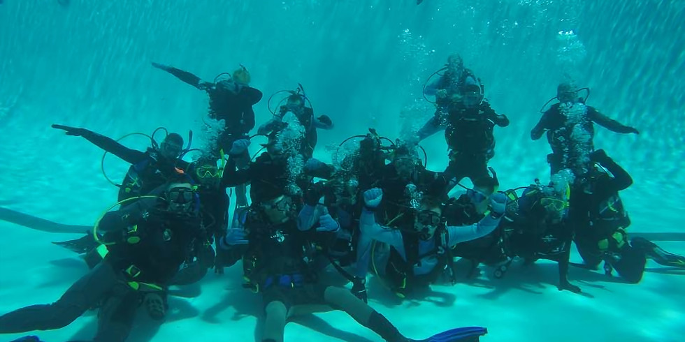 Open Water Diver - Course