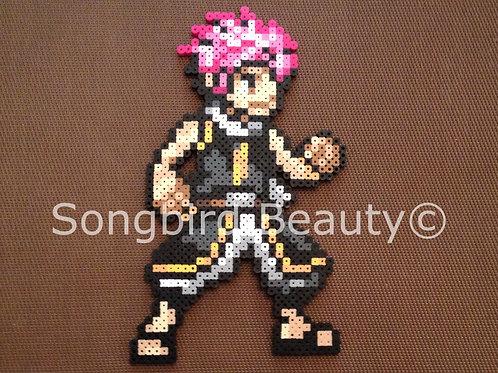 Fairy Tail: Natsu Lg