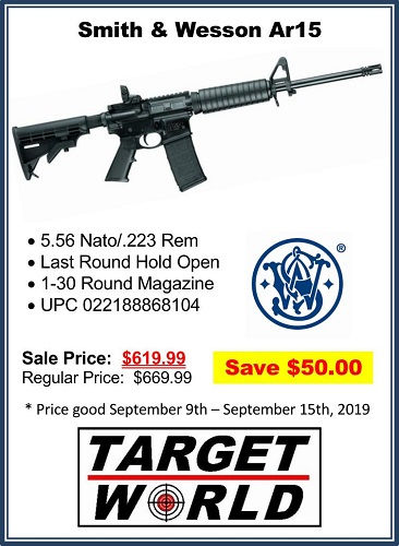 smith and wesson ar15 (500).jpg