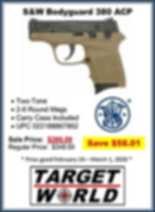 Smith and Wesson 2-Tone Bodyguard 380 (5
