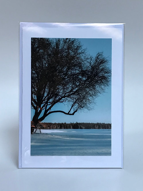 Winter Watch - Greeting Card