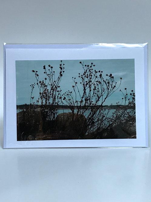 Ocean View- Greeting Card