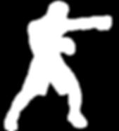 Boxer - White.png