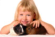 iStock-172163263.jpg