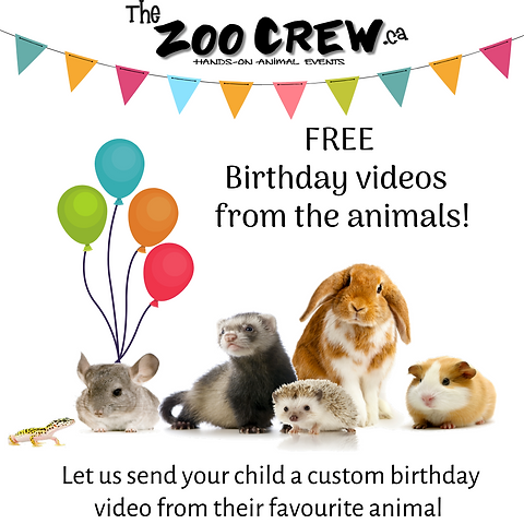 Free birthday video.png