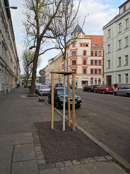 Baumscheibe Wurzner Str. 175.jpg