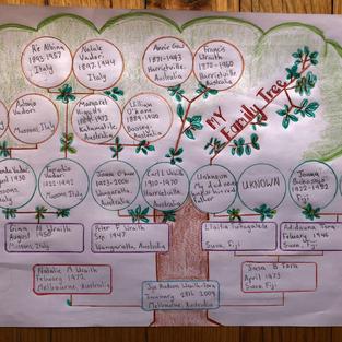 Jye's Family Tree.jpg