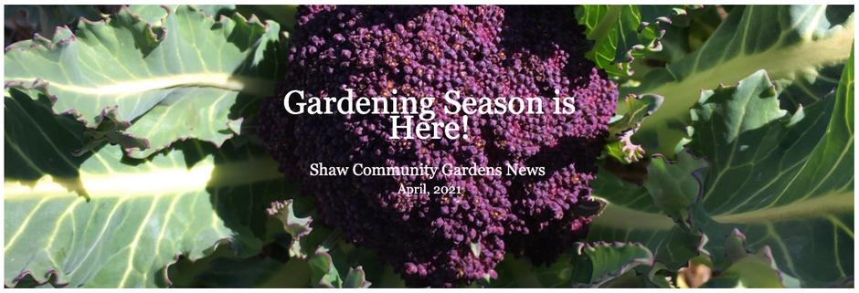 Shaw Community Garden Newsletter April 2021