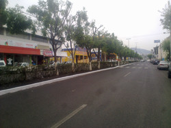 Rehabilitación Calle Corregidora