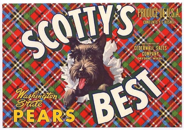 Scotty's Best