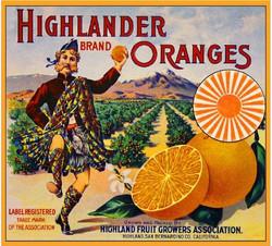 Highlander Oranges