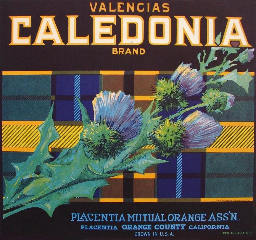 Valencia Caledonia