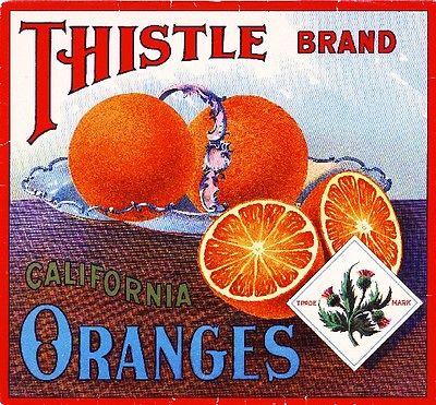 Thistle Brand