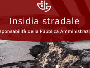 Insidie stradali: obbligo di manutenzione della strada a carico di un ente pubblico