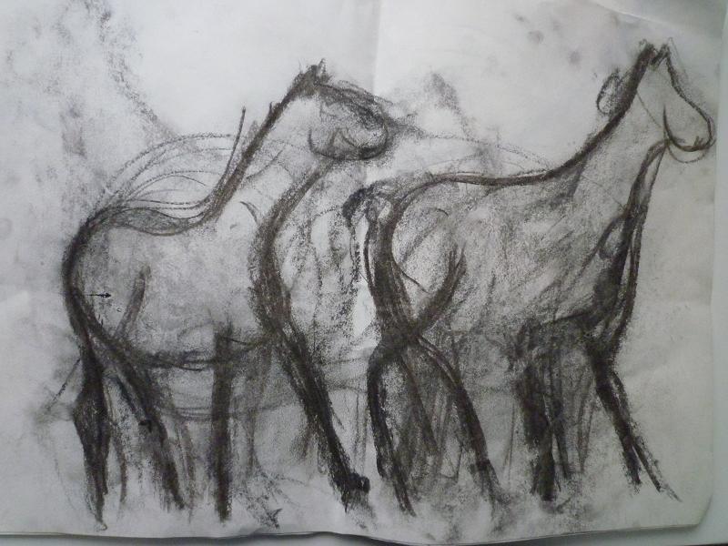 Paarden van Rivka