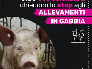 OLTRE 140 SCIENZIATI CHIEDONO LO STOP AGLI ALLEVAMENTI IN GABBIA