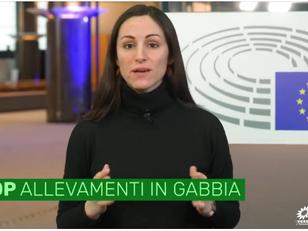 STOP ALLEVAMENTI IN GABBIA